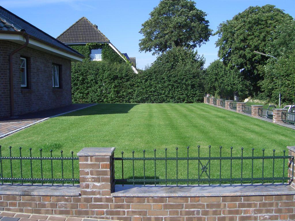 rasen gras zu hause selber anpflanzen wohnung meerschweinchen besch ftigung. Black Bedroom Furniture Sets. Home Design Ideas
